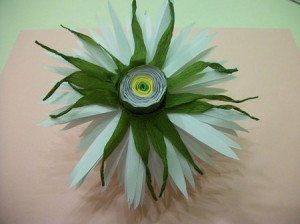 Астра и хризантема из бумаги