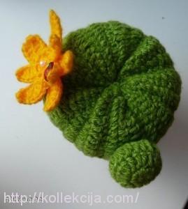 Вязаный кактус