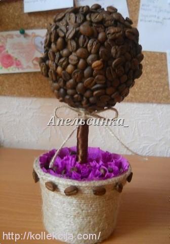 Кофейное дерево своими руками самое