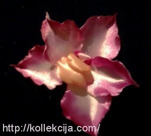 Орхидея из атласной ленты