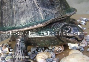 Шкатулка черепаха
