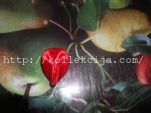Цветок зефирка